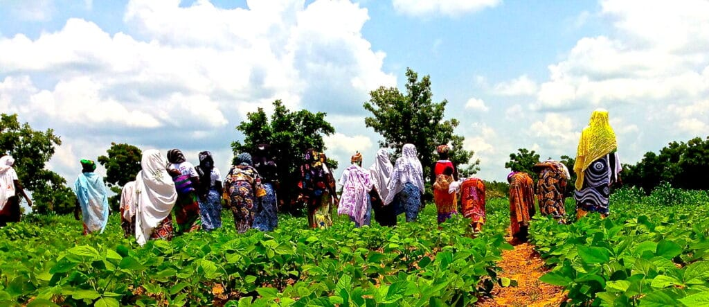 The_female_farmers_showing_us_their_soybean_crops