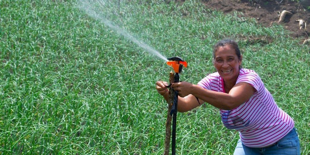 Woman watering a field