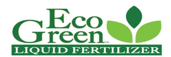 Eco Green Logo