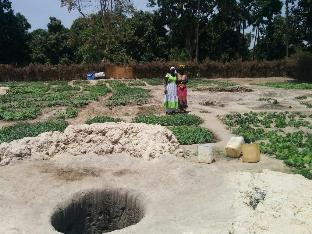 Agriculteurs dans le domaine