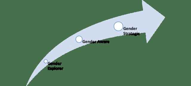 Steps in GEM framework