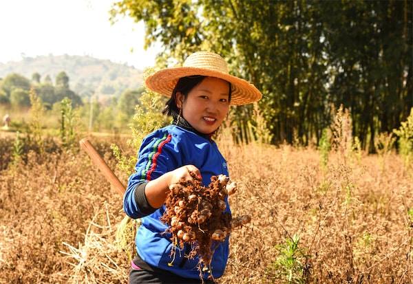 Woman in field holding crops