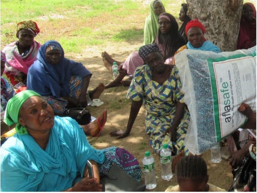 Nigerian women at community event