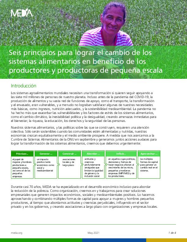 Seis principios para lograr el cambio de los  sistemas alimentarios en beneficio de los  productores y productoras de pequeña escala