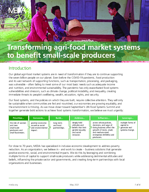 Transforming agri-food market systems to benefit small-scale producers