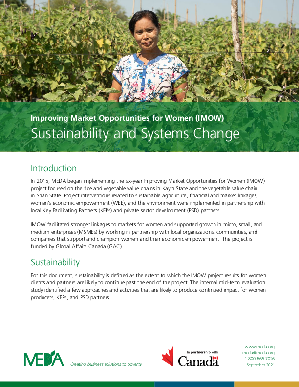 Sustainability and Systems Change