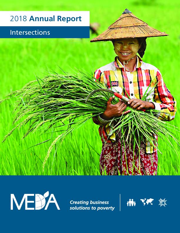 MEDA Annual Report - 2018