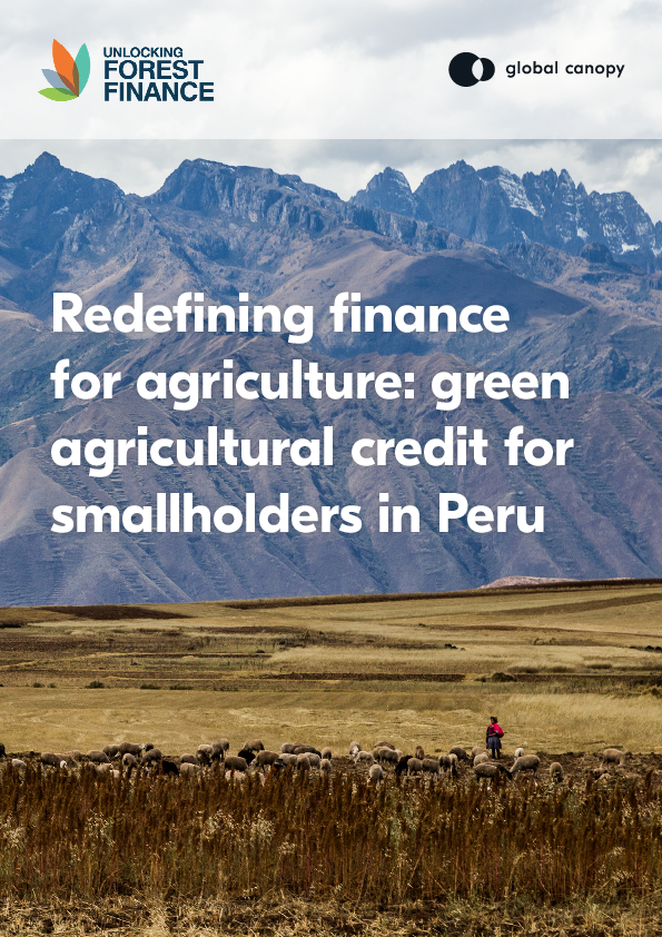 Redefining finance for agriculture – Green Agricultural Credit for Smallholders in Peru (ENG/ESP)
