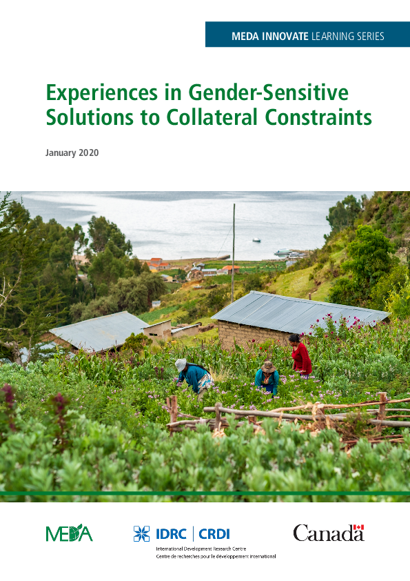 Experiences in Gender-Sensitive Solutions to Collateral Constraints