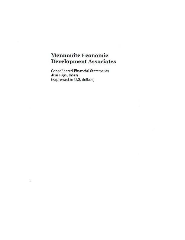FY 2019 MEDA Consolidated Audited Financials