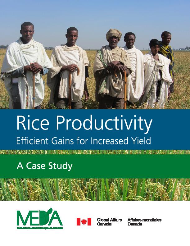 EDGET Rice Productivity Gains Case Study