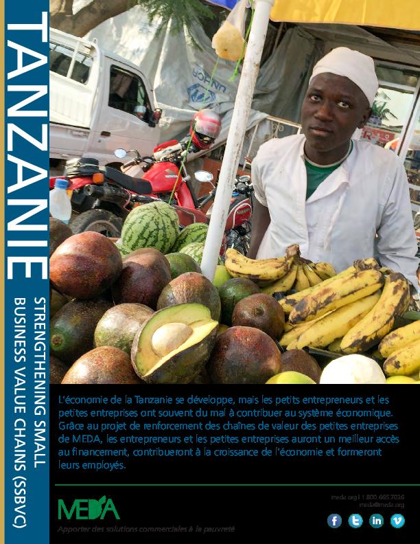 Tanzania SSBVC Project Profile