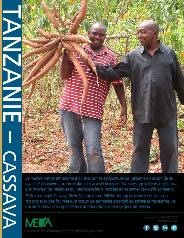 Tanzania Cassava Project Profile