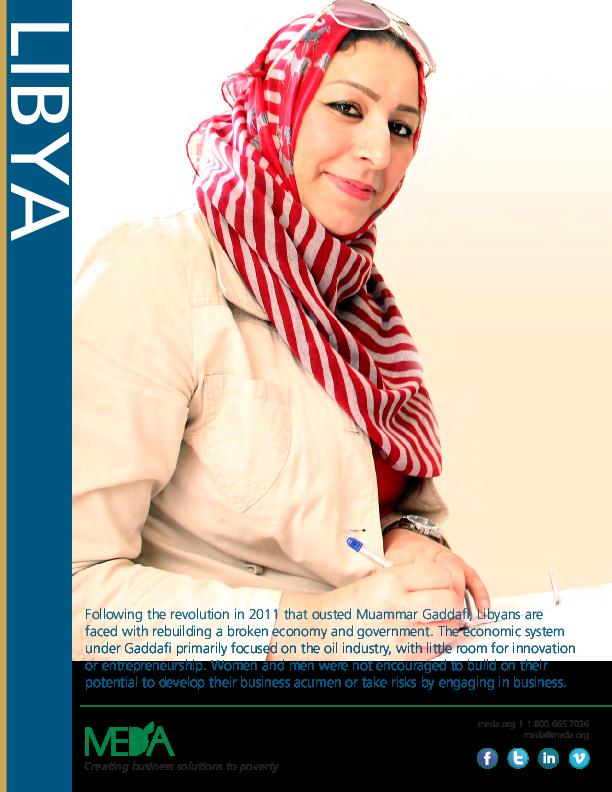 Libya Project Profile