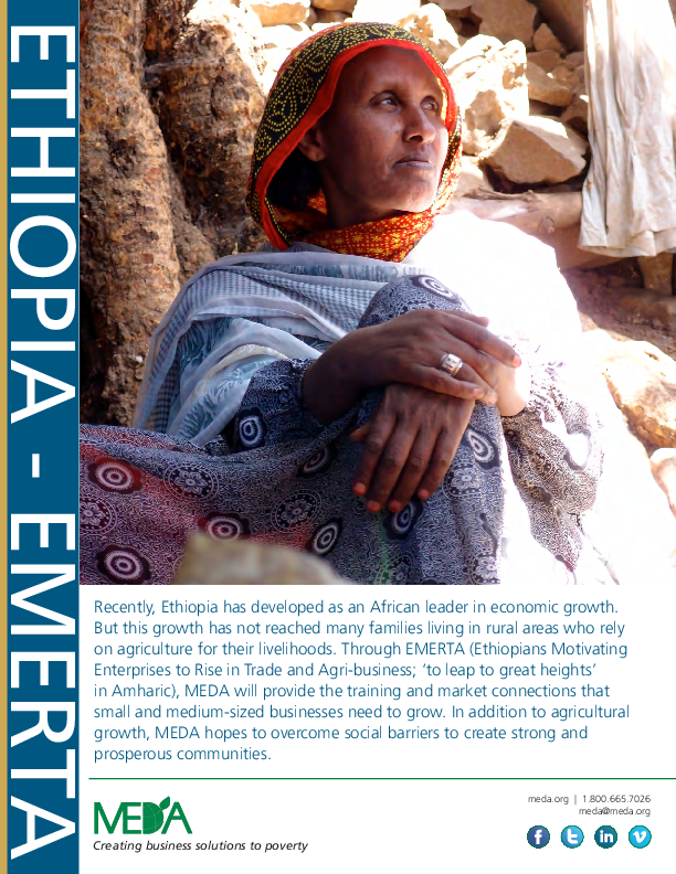 Ethiopia EMERTA Project Profile