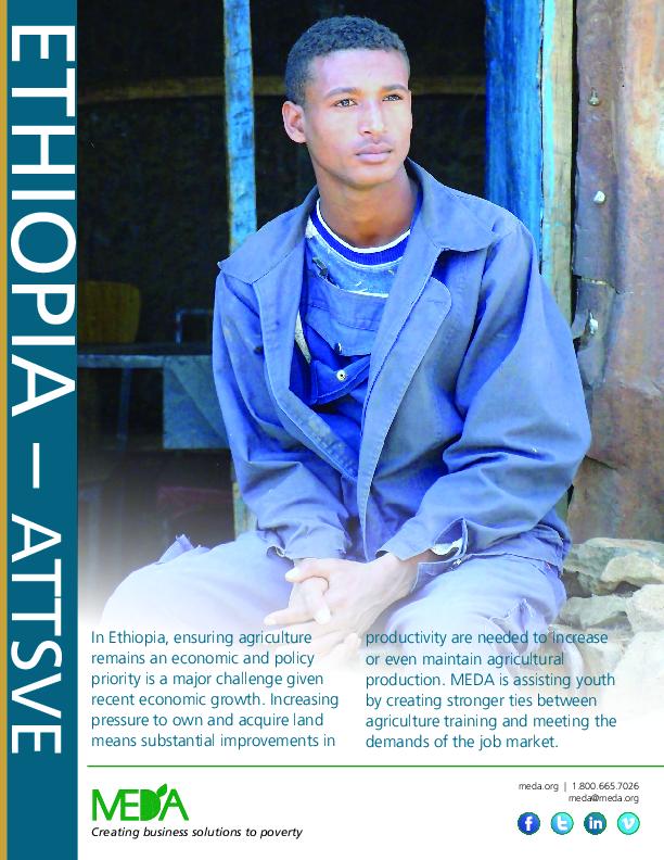 Ethiopia ATTSVE Project Profile